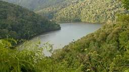 Legado das Águas protege raridades. Benefícios da pitanga-do-cerrado (Bloco 01)