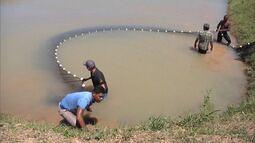 Mirante Rural mostra que produtores aprendem técnicas de como criar peixes em cativeiros