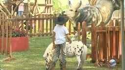 Rancho do Peãozinho reserva atividades especiais para crianças durante a Festa do Peão