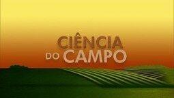 Confira o quadro 'Ciência do Campo' no Inter TV Rural deste domingo (17)