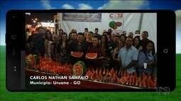 Confira imagens enviadas por telespectadores para o Jornal do Campo