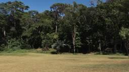 Bahia Rural mostra os detalhes do Parque da Cidade, em Salvador