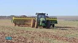 Produtores do estado aproveitam clima para antecipar plantio de soja