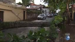 Árvore cai e rua fica interditada no bairro da Federação, em Salvador