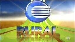 Veja as principais notícias do Clube Rural deste domingo