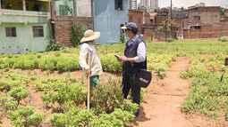 IBGE realiza Censo Agropecuário 2017 em mais de 700 mil propriedades rurais da Bahia