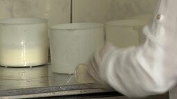 Produtores de leite criam ações para reverter crise em Juiz de Fora
