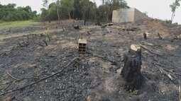 Venda ilegal de terrenos em área de preservação é flagrada em Bauru