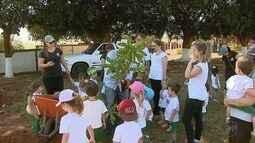 Alunos de escola infantil em Orlândia, SP, têm aula diferente sobre reflorestar
