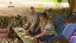 Parte 1: Em Alvorada do Oeste-RO agricultores familiares aposta na cultura do inhame.