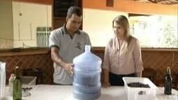 Aprenda a fazer vinho de Jabuticaba