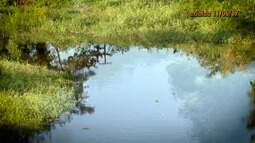 Lei municipal de Ibirapitanga protege nascentes da bacia do Rio Oricó
