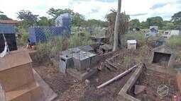 Cemitérios de Campo Grande e Ponta Porã têm túmulos violados e estão abandonados