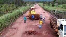 Produtores tapam buracos em trecho de rodovia que passa por Silvanópolis