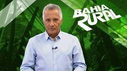 Projeto Bahia Produtiva lança edital para recuperar agroindústrias, nesta segunda (26)