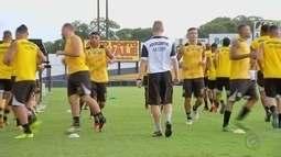 Novorizontino se prepara para enfrentar o Palmeiras