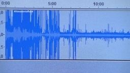 Parte 2: Gravadores de áudio são usados para monitoramento de rebanho