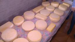 Para não jogar todo leite fora por conta da greve, produtores fazem queijo no RS