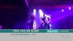 Confira a agenda cultural do Sul do ES