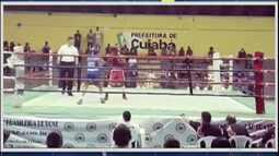 Grazi de Jesus conquista pentacampeonato de boxe no Mato Grosso