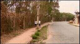 Projetos para áreas de lazer ecológicas estão parados em Divinópolis