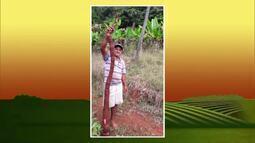 Produtor de Ipaba tem colhido legumes gigantes em sua fazenda