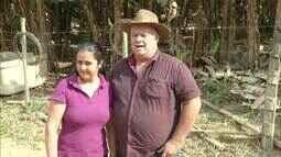 Cultivo de banana ajudam renda de famílias do Leste do estado