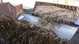Usinas de canas-de-açúcar antecipam fim da moagem
