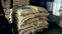 Cotação interna do café arábica está em ritmo de recuperação