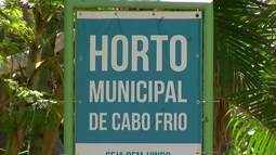 Cabo Frio, RJ, recebe Feira Verde