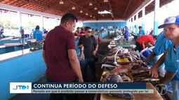 Período de defeso protege 11 espécies de pescado em Santarém