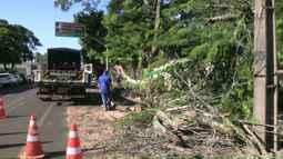 Depois da forte chuva, moradores e equipes da prefeitura consertam os estragos