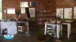 Exposição para comemorar 30 anos do Ibama é aberta