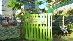 O Em Movimento foi atrás das hortas urbanas!
