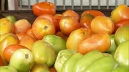 Preço do tomate aumenta nas feiras e supermercados no Maranhão