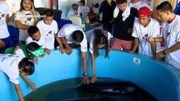 Parte 3: Em Anori, interior do AM, projeto conscientiza preservação do peixe-boi