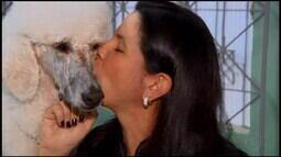 'TV Bicho' mostra cuidados no banho dos animais de estimação