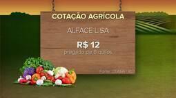 Confira a cotação agrícola da semana
