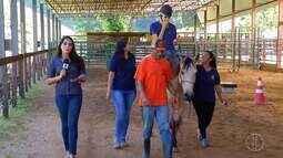 Docilidade de cavalos tem se revertido em melhorar vida de jovens com deficiência