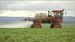 Ministério da Agricultura libera mais 42 agrotóxicos, totalizando 211