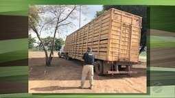 Bandidos atacam fazendas na região da BR- 070