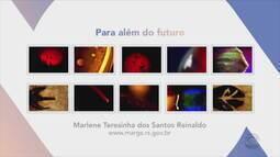 Confira obras de Marlene Teresinha dos Santos Reinaldo da exposição 'Para além do futuro'