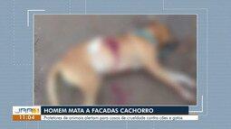 Homem mata cachorro do vizinho a facada e é detido pela polícia em Boa Vista