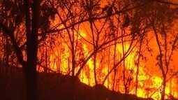 Multas serão aplicadas a quem for flagrado provocando queimadas em Sorocaba