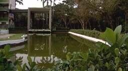 Jardim Botânico de Santos promove atividades especiais na primavera