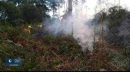 Novo incêndio acontece no Parque Nacional do Caparaó, na divisa entre ES e MG