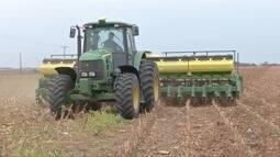 No norte choveu mais em algumas fazendas