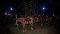 Turistas fazem cavalgada durante lua cheia