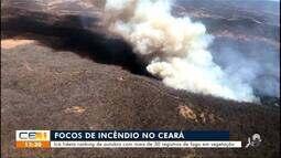 Icó lidera ranking de outubro com mais de 30 registros de fogo em vegetação