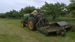 Polícia Civil investiga casos de roubos a máquinas agrícolas em São Miguel Arcanjo